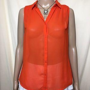 Tunic sleeveless sheer top
